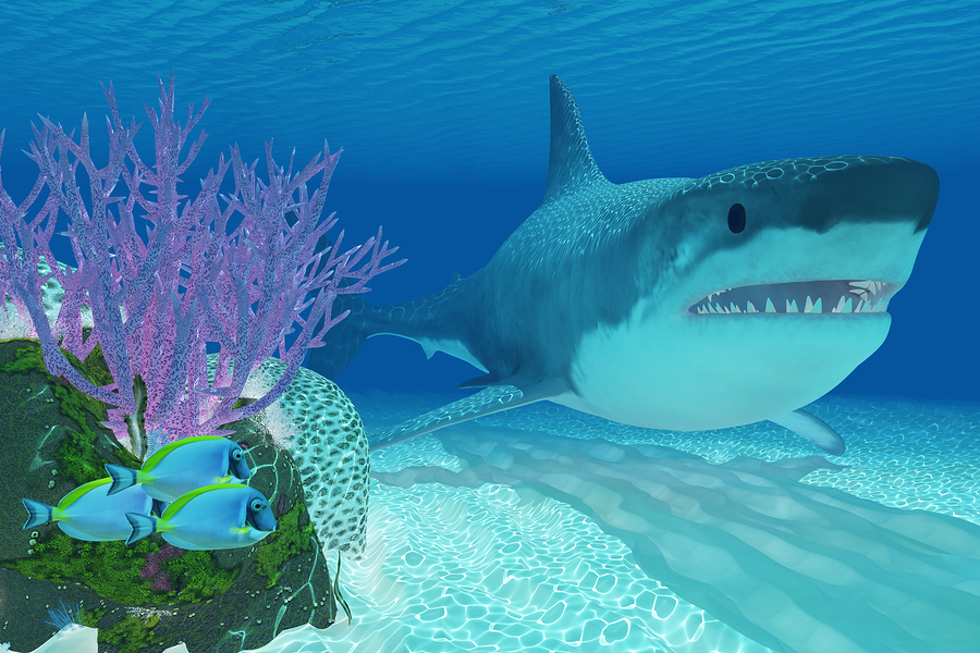The 5 Coolest Prehistoric Sharks To Ever Roam Our Oceans